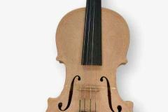 Violin BioWOOD
