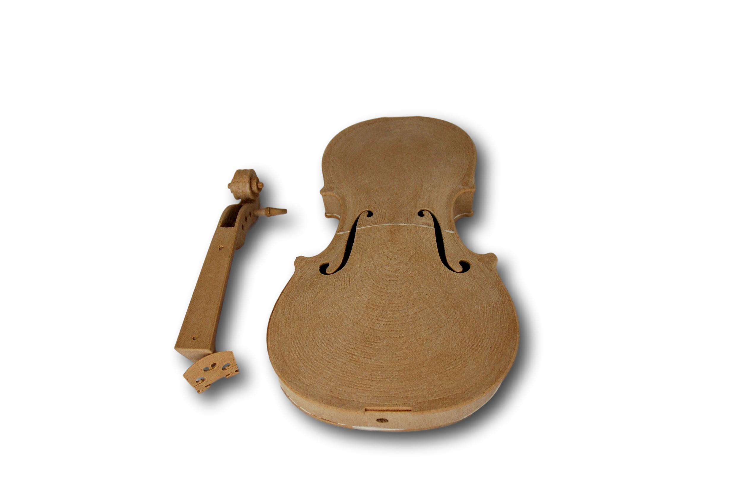 ROSA3D BioWOOD violin